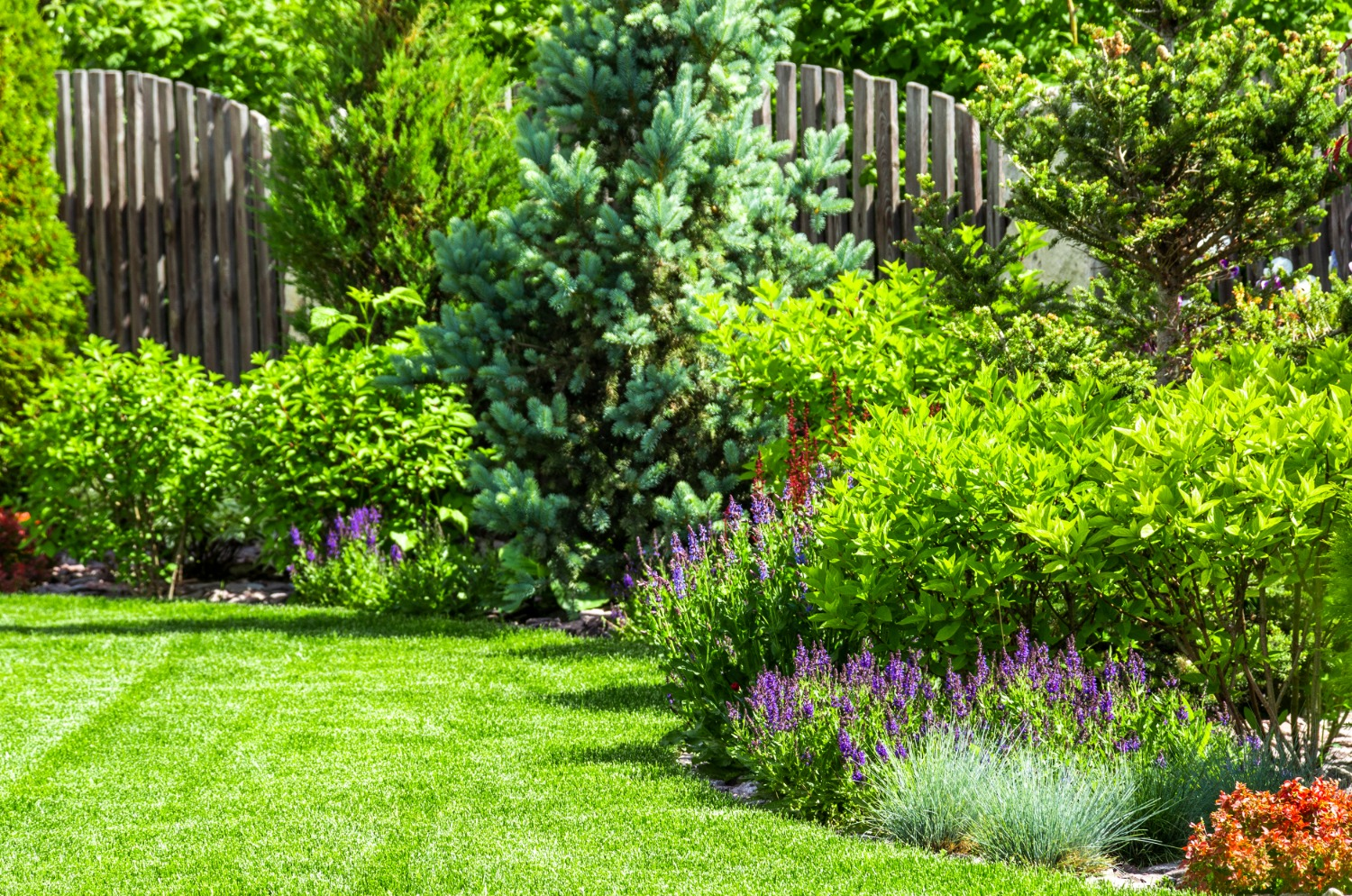 bungalow flower bed services in dallas tx