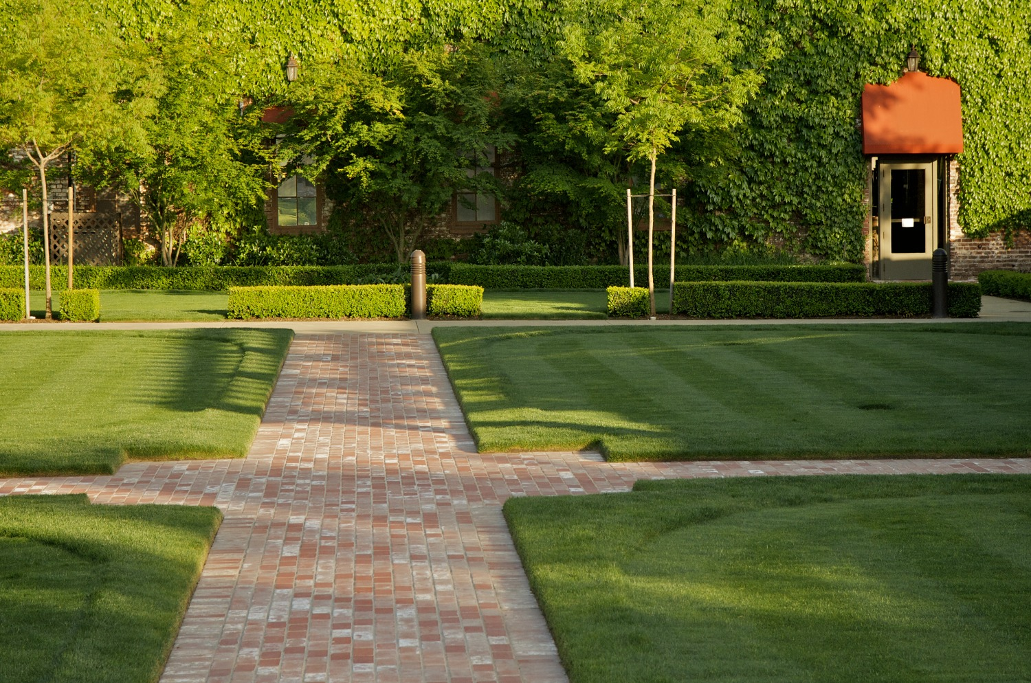 courtyard lawn care in dallas tx