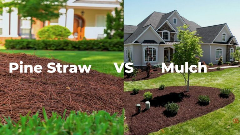 pine straw vs mulch pros and cons