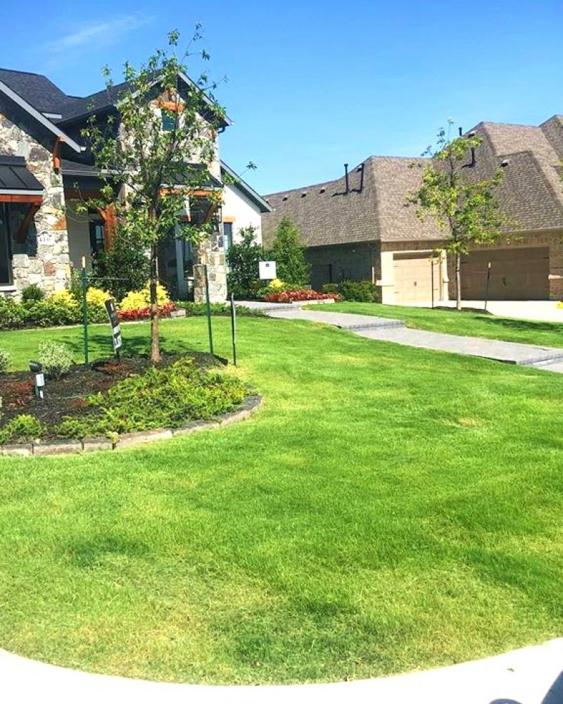 landscaping companies in dallas